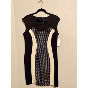 NWT Black and Cream Lace Cutout Dress